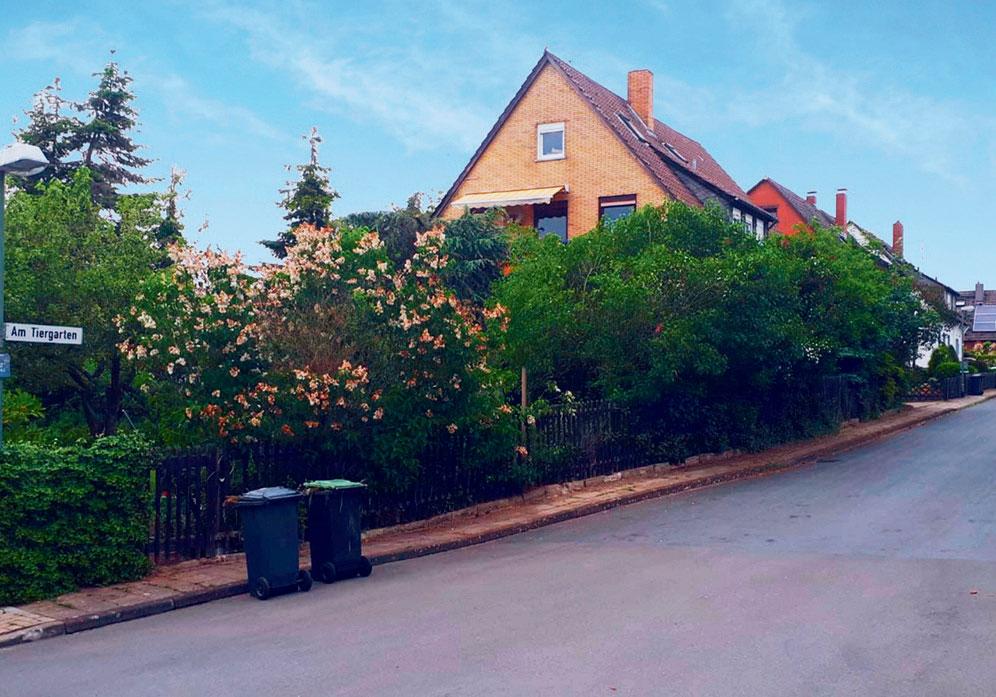 """Straße """"Am Tiergarten"""" in Klein Schöppenstedt"""